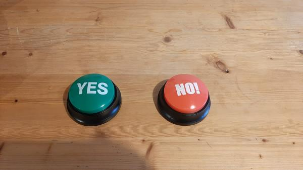 Yes and No Push Button